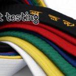 Taekwondo Promotion Test